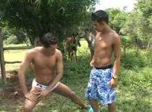 Brasileiros gays